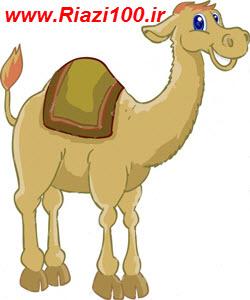 پاسخ تمرین های کتاب عربی 3 سوم